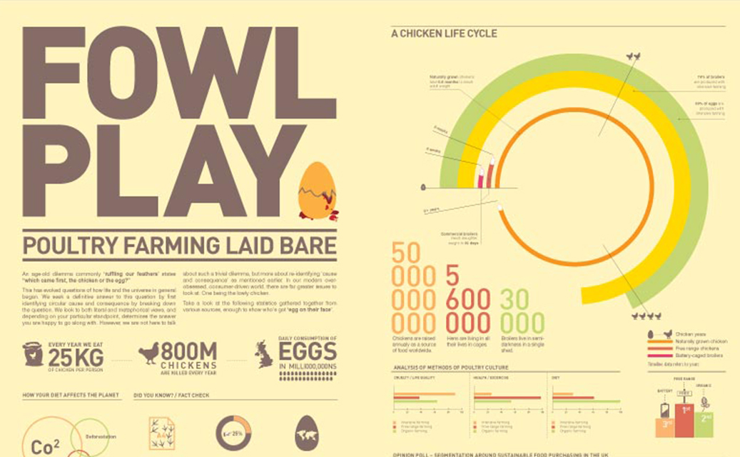 Fowl Play Infographic